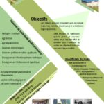 thumbnail of Flyer AE-compress